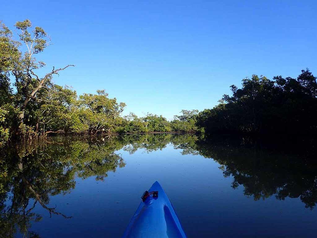 Kayaking in Tingalpa Creek in Brisbane
