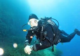 Beim Schnuppertauchkurs für Anfänger - Try Open Water mit Octopus Garden, erkundet ein Taucher die Unterwasserwelt Maltas.
