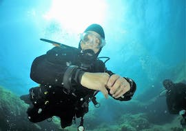 A diver is exploring the fascinating underwater world of Malta during his Trial Scuba Diving for Beginners at Saint Paul's Bay which is organized by Octopus Garden Diving Centre in Malta.