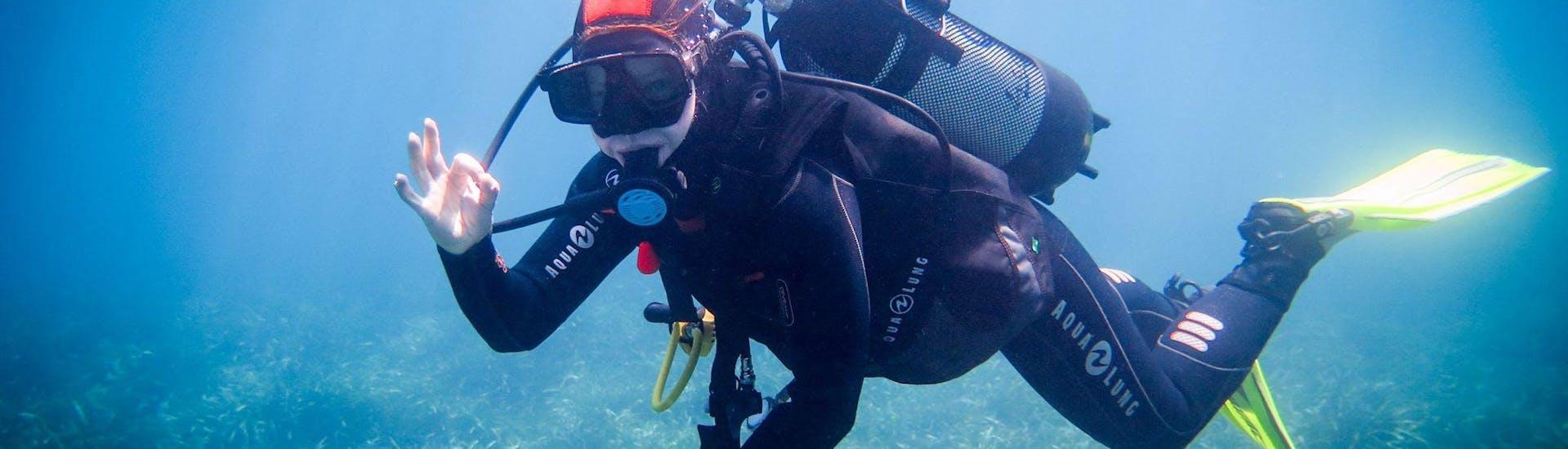 PADI Discover Scuba Diving in Qawra Bay