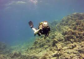Trial Scuba Diving Course for Beginners - Discover Scuba