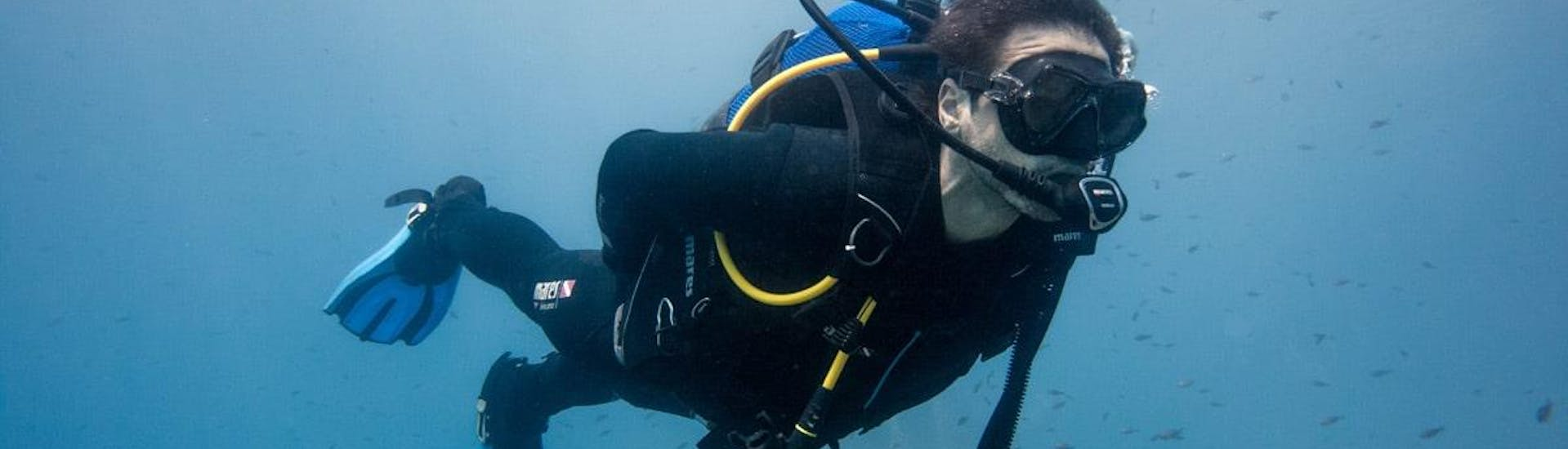 Discover Scuba Diving for Beginners - Elba