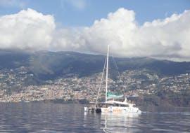 Paseo en catamarán de Funchal con baño en el mar & avistamiento de fauna con VMT Madeira