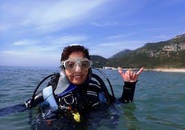 PADI Discover Scuba Diving para principiantes en Arrabida