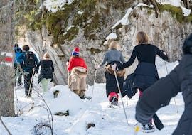 Winter Alpine Adventure with Snowshoeing and Sledding