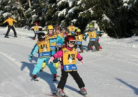 Ski Lessons for Kids (4-12 years) - Half Day - Beginner