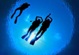 Guided Boat Dives around Medulin for Certified Divers with Diving Center Shark Medulin