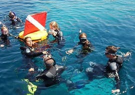 A group is swimming during a snorkeling tour in l'île rousse with EPIR Plongée.