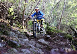 Mountain Bike Day Tour - All Levels with WeRide Portugal