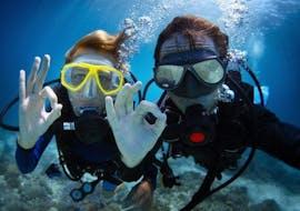 Scuba Diving Packages in Tučepi on the Makarska Riviera with Butterfly Diving & Sailing Makarska