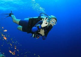 CMAS** Scuba Diving Course in Tučepi for Certified Divers with Butterfly Diving & Sailing Makarska