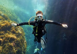Guided Dives from Port d'Andratx for Certified Divers with Balear Divers