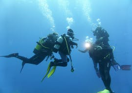 PADI Advanced Open Water Diver Course in Port d'Andratx with Balear Divers