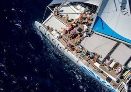Catamaran on the calm waters during a private catamaran tour in Palma Bay in low season with Oasis Catamaran.