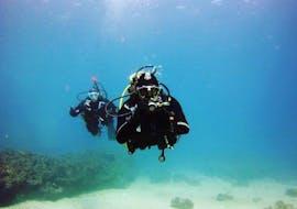 Scuba Duikcursus (PADI) in Torrenova voor beginners met Norway Dive Mallorca