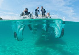 Guided Boat Dives in Santa Ponsa for Certified Divers with ZOEA Mallorca
