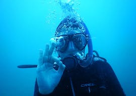 Scuba Diving Course for Beginners - PADI Scuba Diver with Blue Water Diving Gran Canaria
