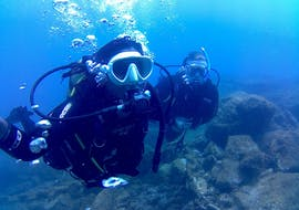 Scuba Diving Course for Beginners - PADI Open Water Diver with Blue Water Diving Gran Canaria