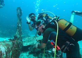 Scuba Diving Course - PE20 & SSI Open Water Diver - Beginner with Antidote Plongée Guadeloupe