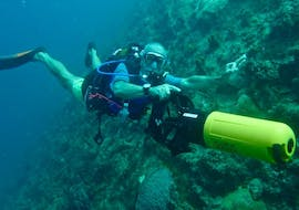 """Scuba Diving """"Guided Excursion"""" - Port Louis with Antidote Plongée Guadeloupe"""