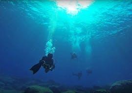 Plongée d'exploration à Protaras pour Plongeurs certifiés avec The Scuba Base Ayia Napa