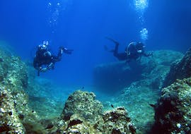 The wonders of marine life are waiting for you.