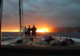 Sunset Catamaran Tour with Dolphin and Whale Watching with VMT Madeira