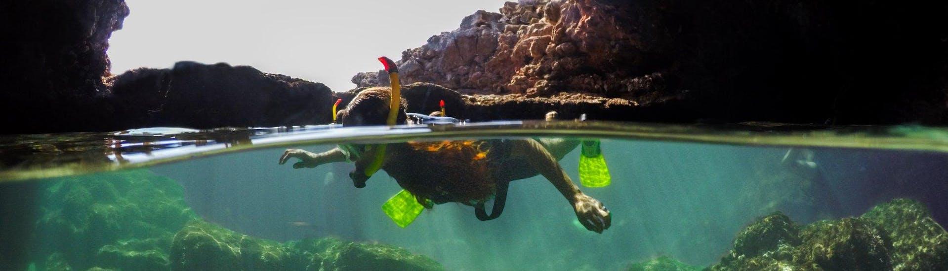 Esnórquel en Porto Cristo con Skualo Diving Watersports Mallorca - Hero image