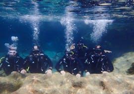 Scuba Diving - Guided Boat Dives from Porto Cristo with Skualo Porto Cristo