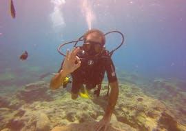 Discover Scuba Diving for Beginners - Ayia Napa avec Ocean View Diving Ayia Napa