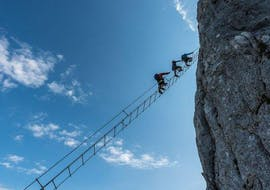 A group of people climbing up the spectacular sky ladder of the Via Ferrata for the Brave on the Donnerkogel with the experienced guides from Bergführer Salzburg.