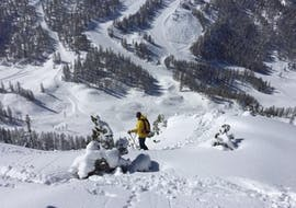 A skier skiing down a mountain during his private off-piste lessons for all levels with Wolfgang Pfeifhofer.