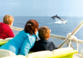 A family goes dolphin watching in Alcúdia with Alcúdia Sea Trips.