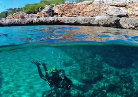 A participant of the PADI Discover Scuba Diving in Portocolom with East Coast Divers Mallorca dives along the rocky coast.