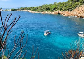 A catamaran is moored in the Bay of Juan-les-Pins during a Private Catamaran Trip with SeaZen.