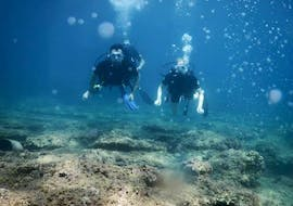 Two people are diving to the photograph during a PADI Open Water Diver Course for beginners in Anissaras with Coral Diving Center Crete.