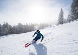 Private Ski Lessons for Adults of All Levels avec Schneesportschule Balderschwang