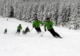 A group of skiers is racing down the slopes during their adult ski lessons for adults with experience with skischool Oberharz in Wurmberg..