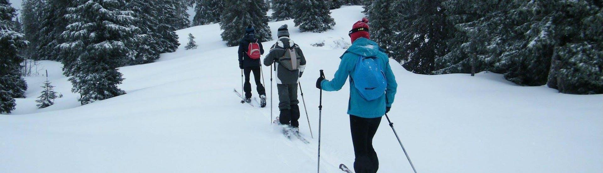 Des skieurs skient dans la neige au milieu d'arbres pendant leur Cours particulier de ski de fond - Basse saison avec l'ESI Font Romeu.